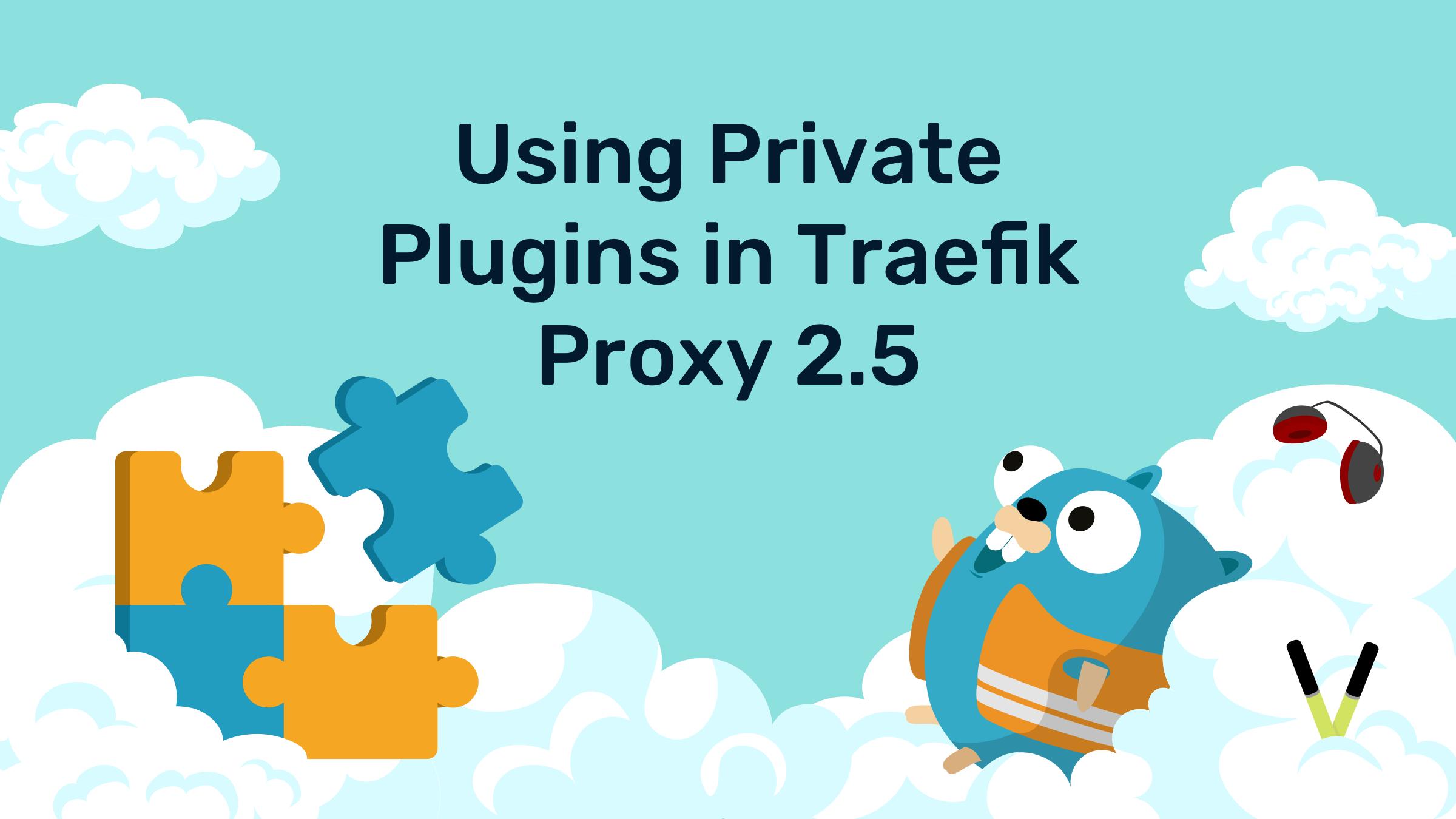 Using Private Plugins in Traefik Proxy 2.5